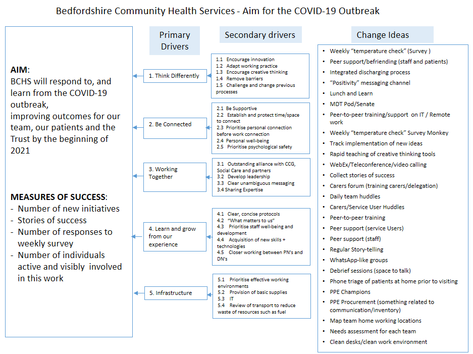 Bedfordshire Community Health Services - Aim